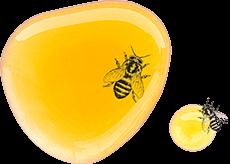 Tâche de miel